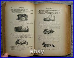 1883 ANTIQUE COOKBOOK Vintage Cookery Home Farm How-To DOMESTIC Mrs. Beeton RARE