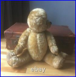 Large Vintage Farnell English mohair Teddy Bear, 20 no ears