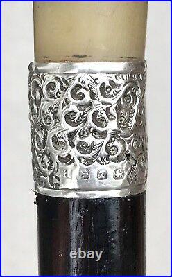 Vintage Antique 19C English Horn Hallmarked Sterling Silver Walking Stick Cane