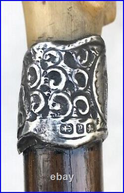Vintage Antique English Sterling Silver Buffalo Horn Handle Walking Stick Cane